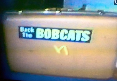 Backing The Bobcats - A Personal Journey